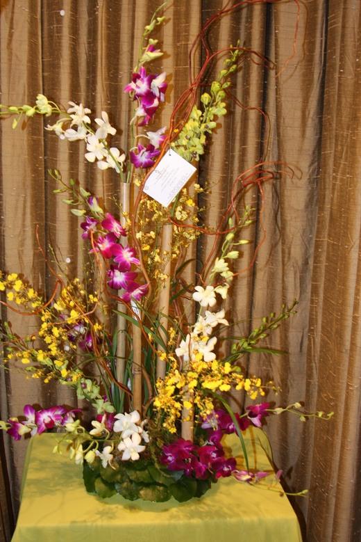 Orchid Splendor by belle fleur