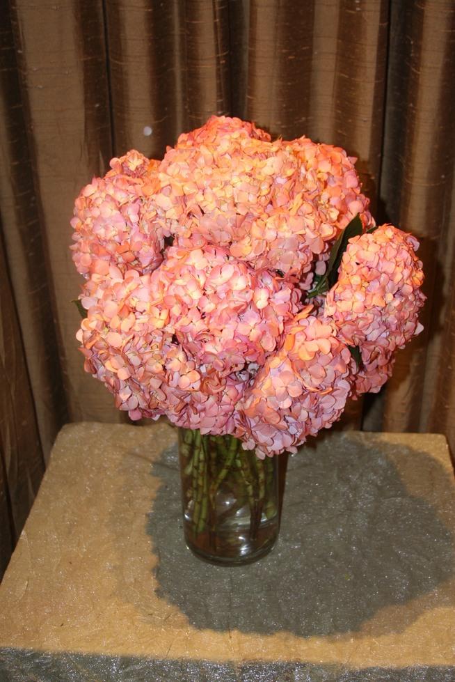 Endless Summer Pink Hydrangeas by belle fleur