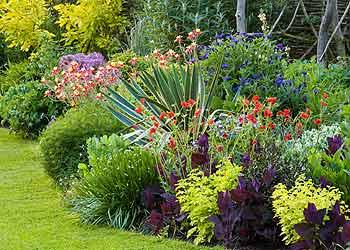 Taclus Gardening Cardiff