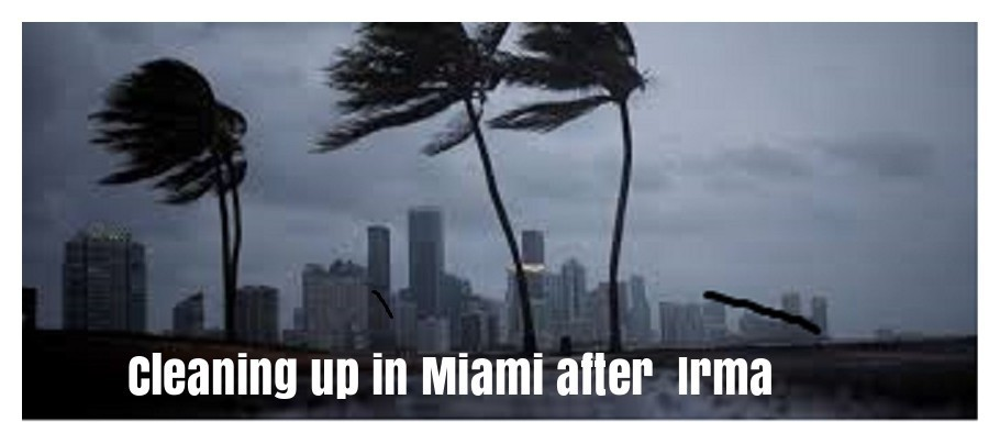 Cleaning up Miami after Hurricane Irma