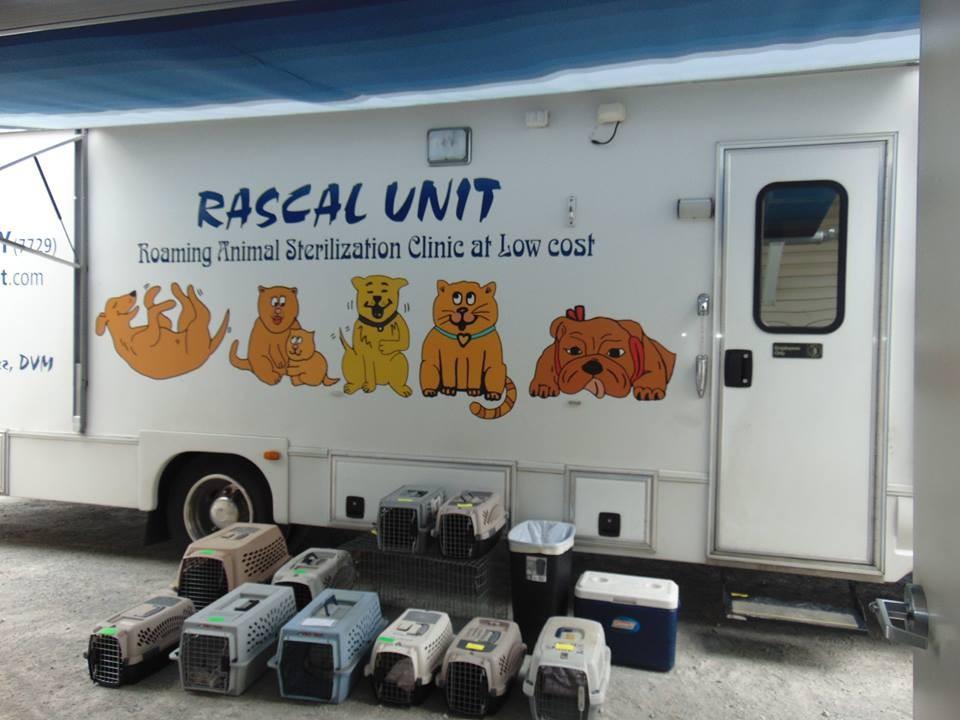 rascal unit9