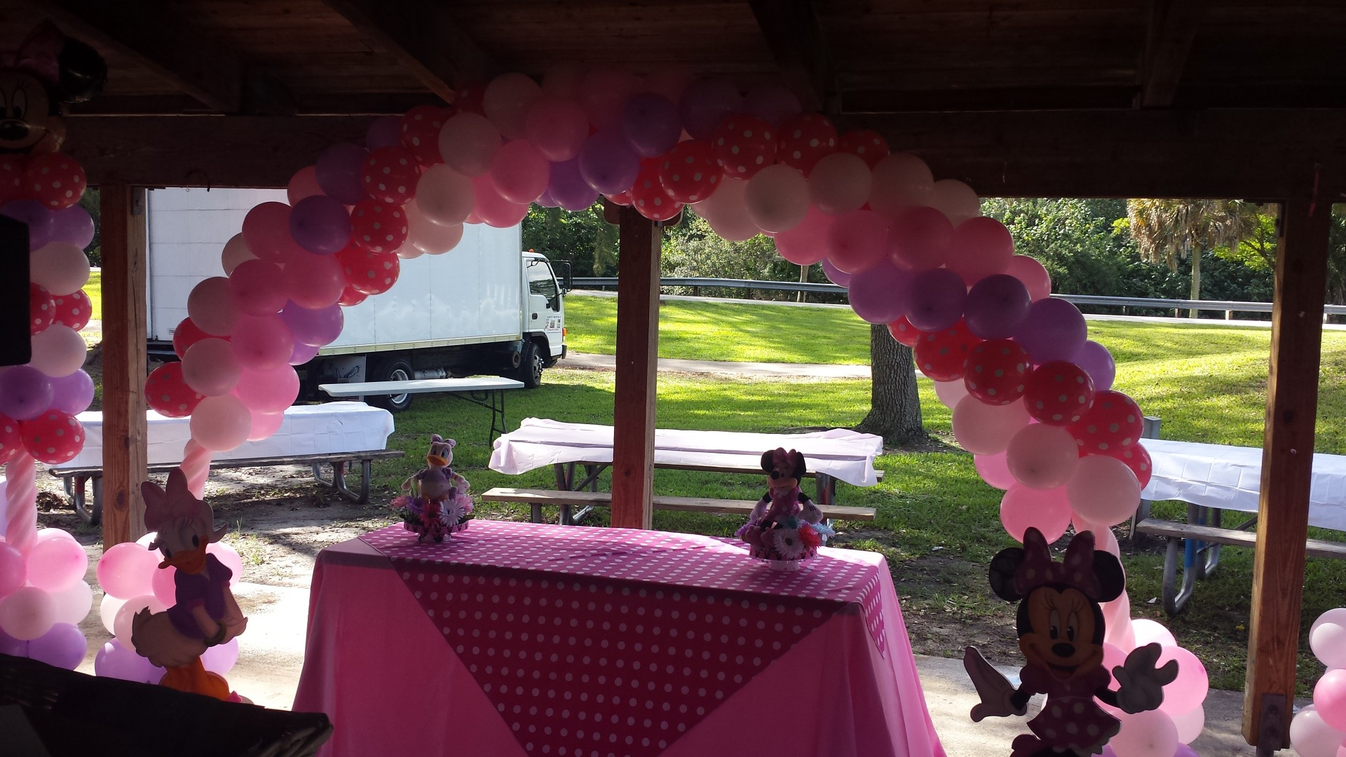 Minnie Mouse Decoration Minnie Moouse & Minnie Mouse Arch Balloons