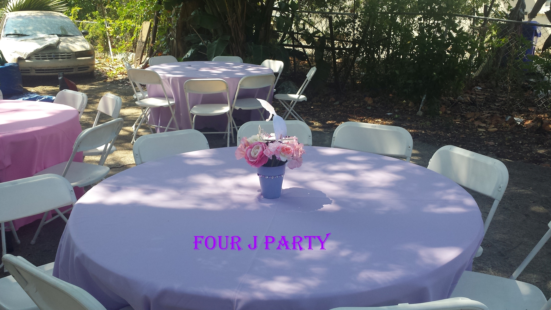 Party Rental Sofia the First Decoration