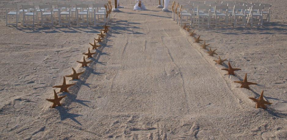 NATIONWIDE BEACH WEDDING RENTALS: Bamboo Arches and Beach Theme ...