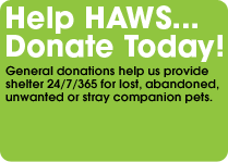 HAWS donations for lost, abandoned, unwanted and stray pets.