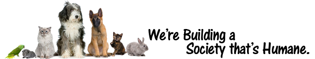 Humane Animal Welfare Society Waukesha, Wisconsin