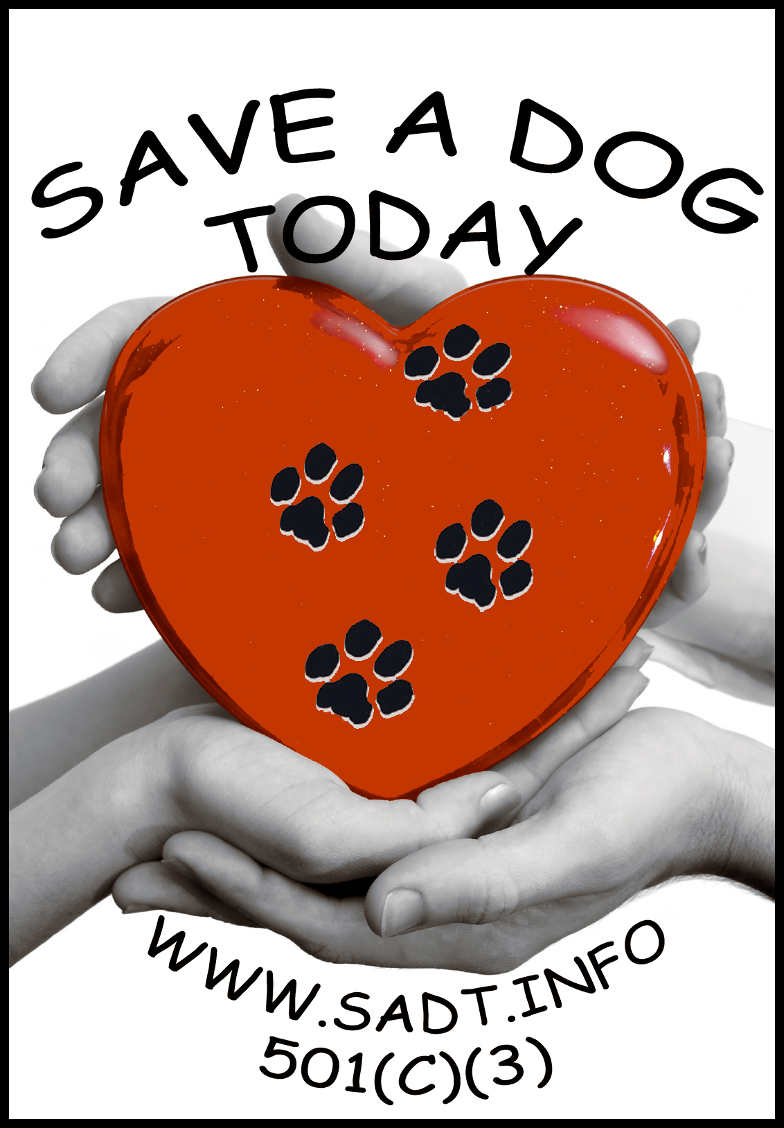 Save A Dog Today