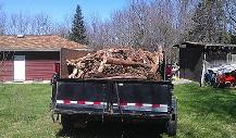 Yard debris removal Monroe NY