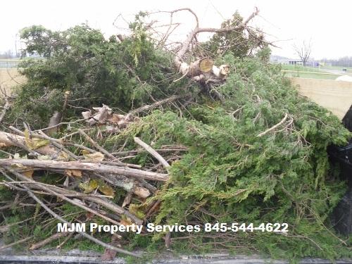 Yard debris removal warwick ny