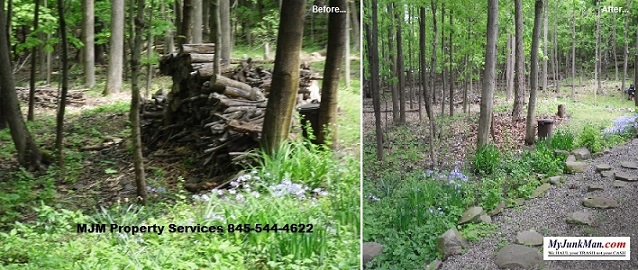 Old fire wood clean up and removed in monroe ny