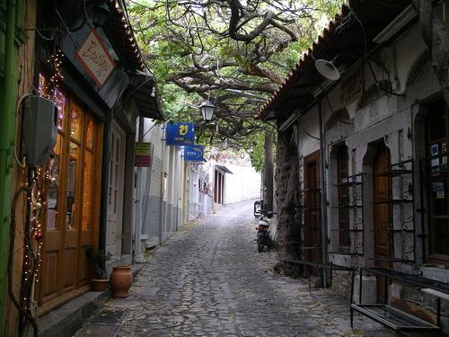 molivos covered market