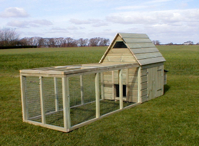 My website for Small chicken coop plans and designs ideas