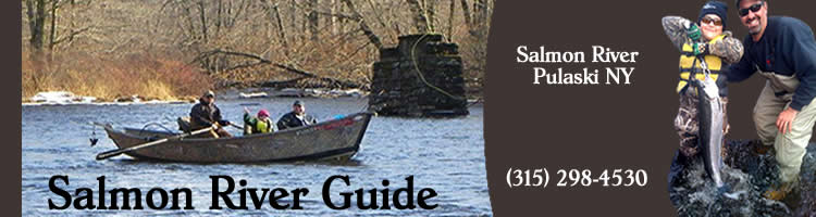 Home for York river fishing report