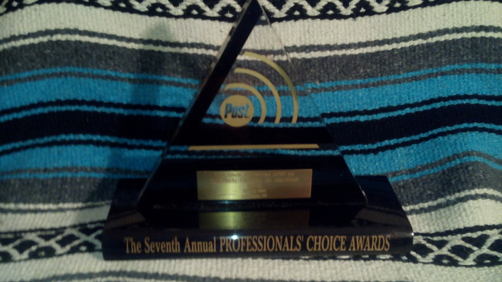 POST Professionals Choice Award for CineLook