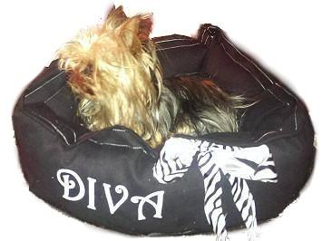 Black Diva Dog Bed with Lexus