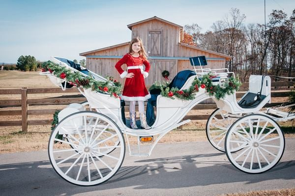 hannah in carriage