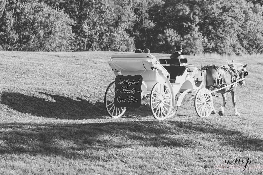 b and w carriage