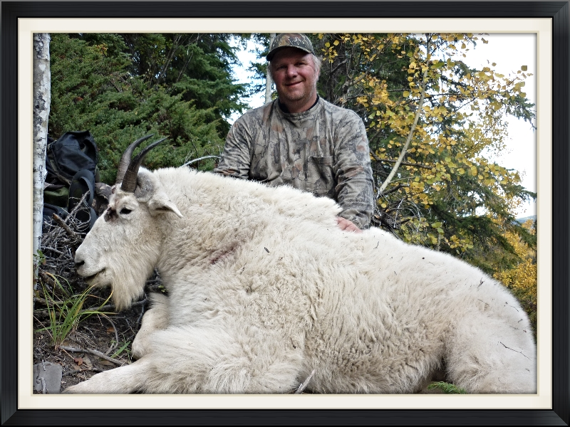 BC Mountain Goat Hunting Guide Outfitters