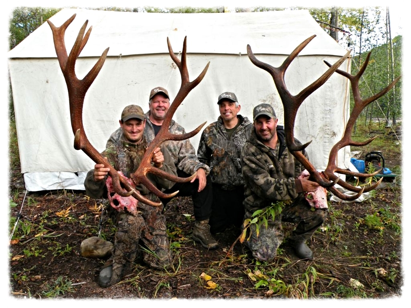Elk Hunting BC Hunting Guides Outfitters