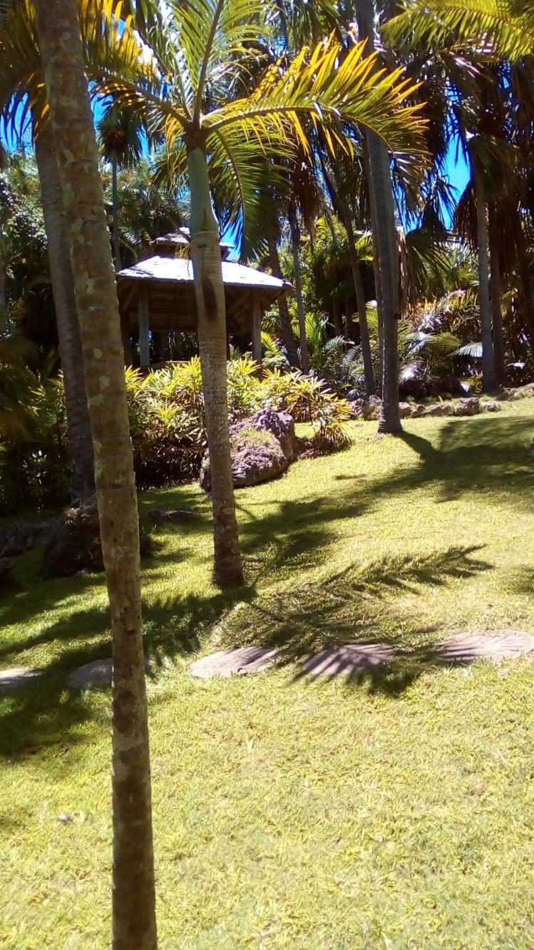 Andromeda Gardens Barbados - Homepage