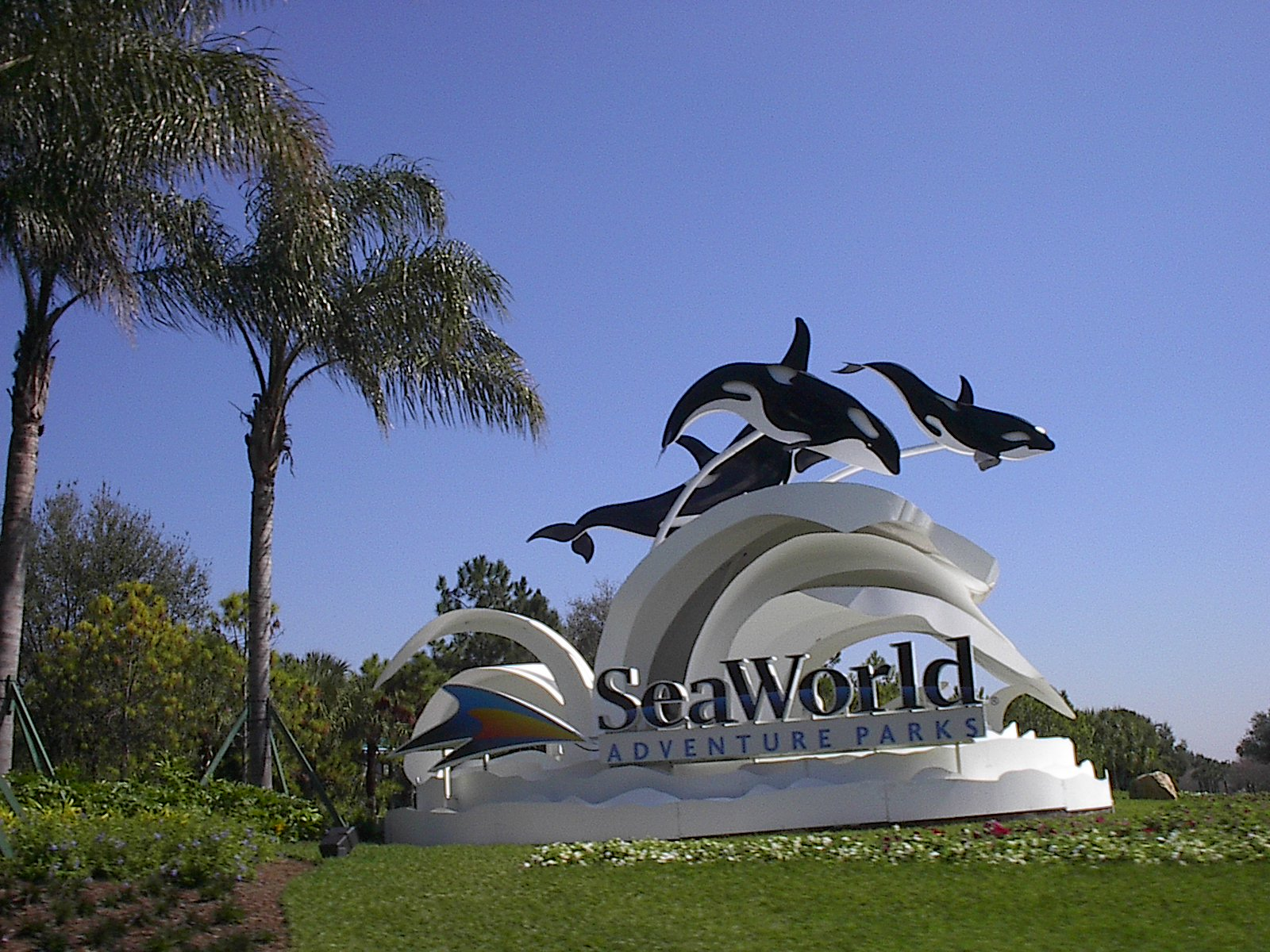 Orlando-Theme-Parks-Sea-World-1.jpg