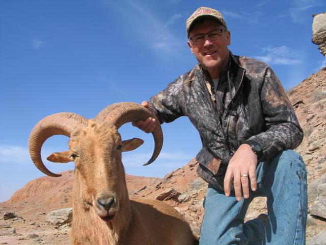 Aoudad Hunting Texas Kiowa Creek Outfitters